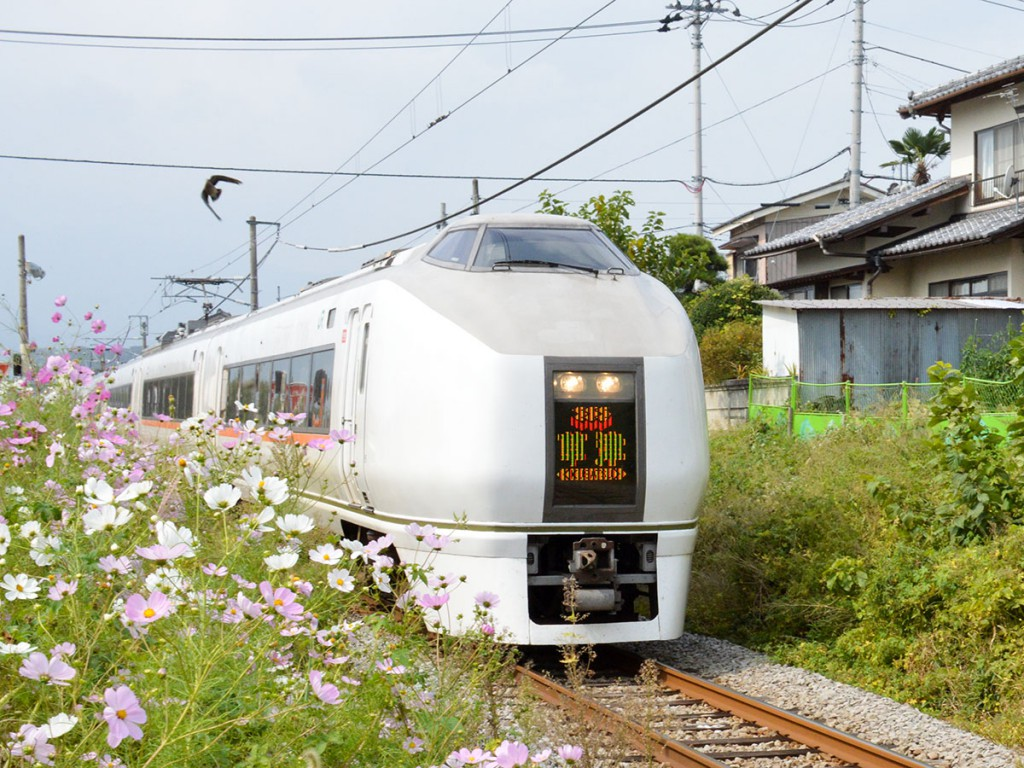 Limited Express Kusatsu