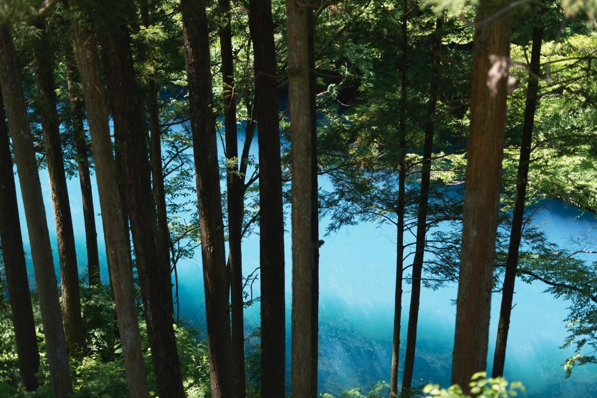 森と四万ブルー