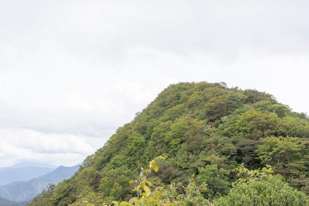 北斜面から稲包山頂