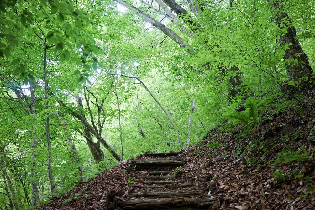 小倉の滝遊歩道