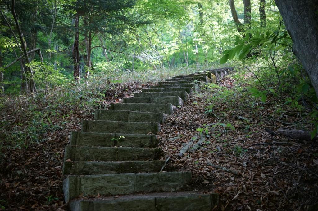 小倉の滝登り道