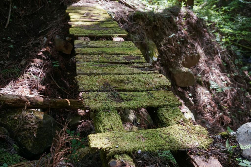 不動の滝へのルート