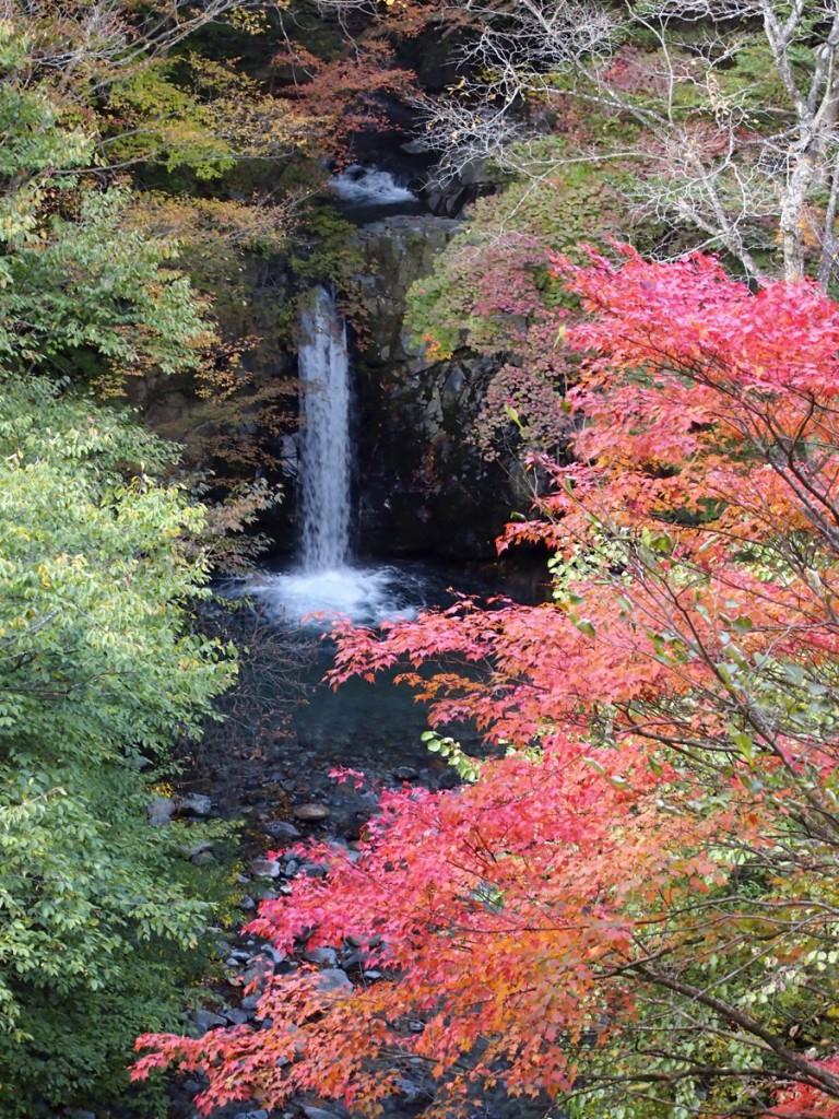 紅葉の小泉の滝