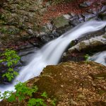 魚止めの滝、黄金の滝は反下(たんげ)川の滝