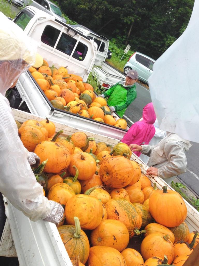 軽トラに山盛りのハロウィンかぼちゃ