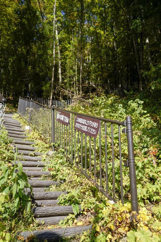 登りの階段