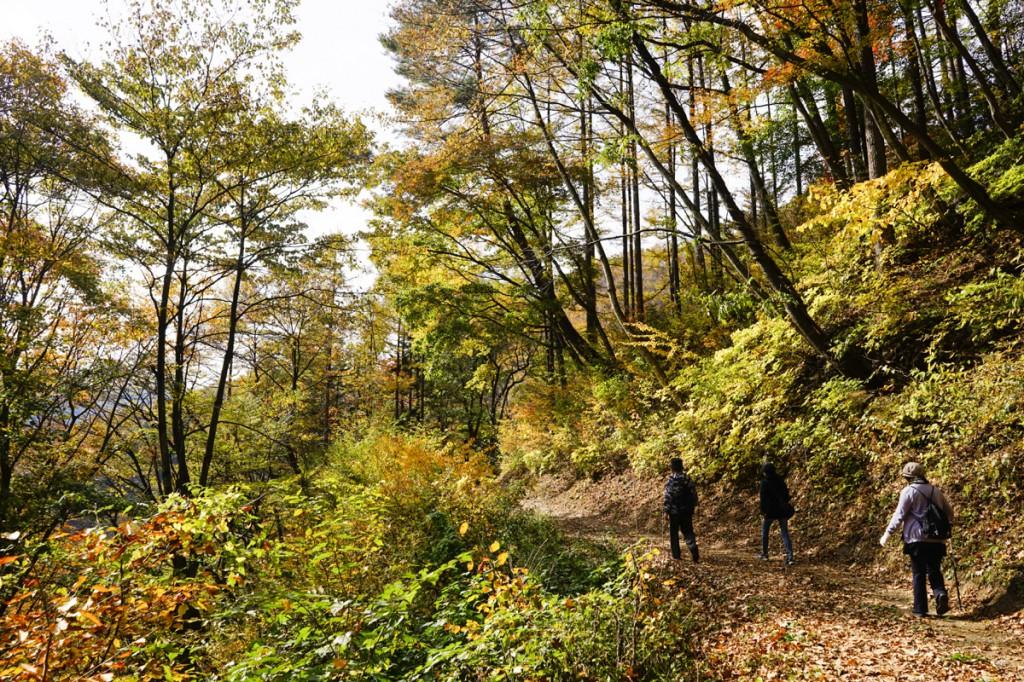 摩耶の滝遊歩道