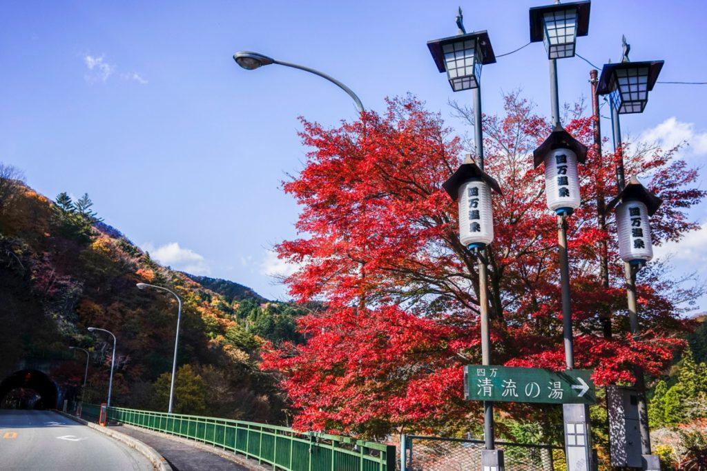四万大橋の紅葉