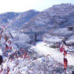 先日(24日の)雪景色