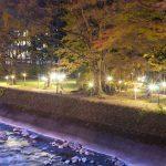 私のNo1紅葉写真 (kashiwa編)