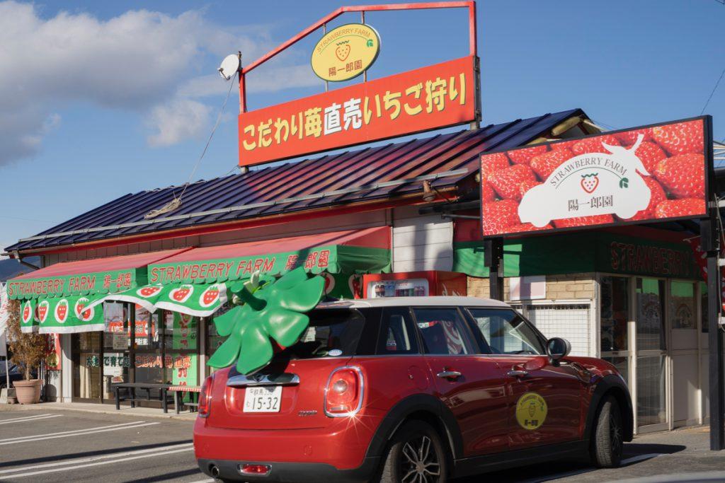 渋川市樽のイチゴ狩り
