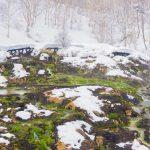 チャツボミゴケ公園のスノーシューツアー