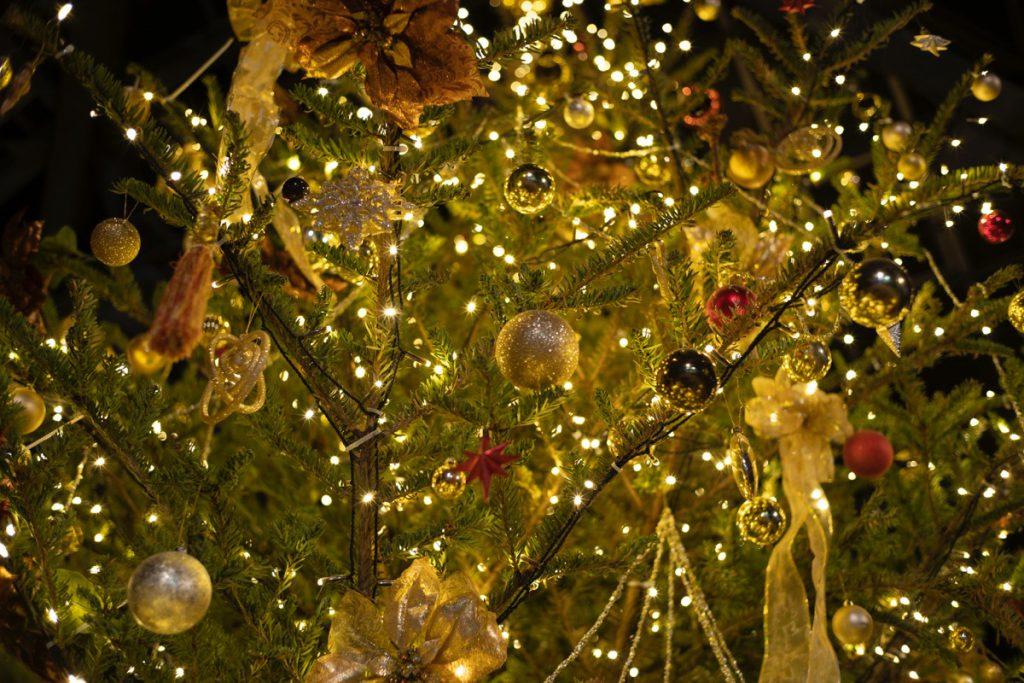温室エリアには巨大なクリスマスツリーも