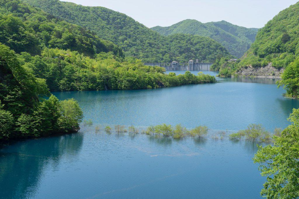 新緑の時期に現れる「浮島」
