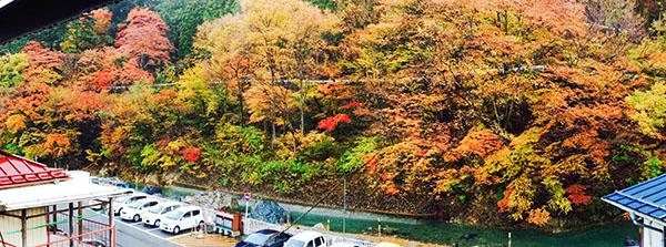 柏屋カフェからの四万川の紅葉