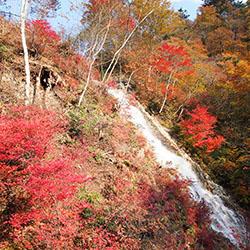 四万温泉しゃくなげの滝の紅葉