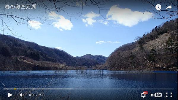 早春の奥四万湖